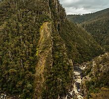 Leven Canyon from Edge Lookout viewing North by fotosic