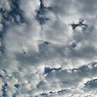 Look!  It's Clouds! by KittenFlower