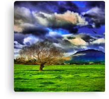 Meander Valley Tree Canvas Print