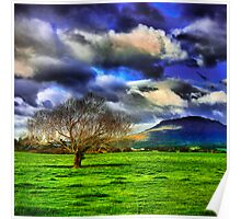 Meander Valley Tree Poster