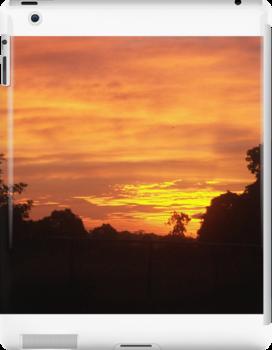 Early Summer Sunrise by KittenFlower
