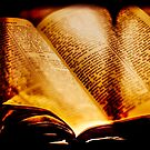 The Book by Apostolos Mantzouranis