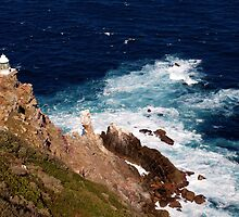 Cape Point, South Africa by Ludwig Wagner