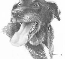 Crazy happy dog drawing by Mike Theuer