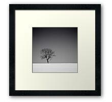 Lone Tree in Winter Framed Print