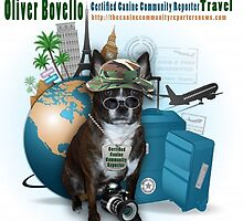 Meet Oliver Bovello, Canine Community Reporter by Kathy Tarochione