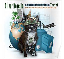 Meet Oliver Bovello, Canine Community Reporter Poster
