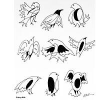'BIRD DOODLES'  Photographic Print