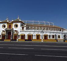The Bull Ring, Seville by wiggyofipswich