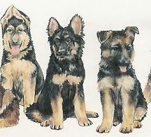 German Shepherd Puppies by BarbBarcikKeith