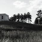 Fuertes Observatory 2 by Mark  Reep