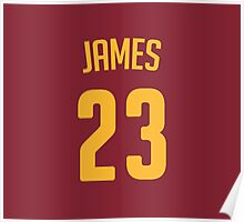 LeBron James #23 Poster
