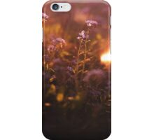 II iv. iPhone Case/Skin