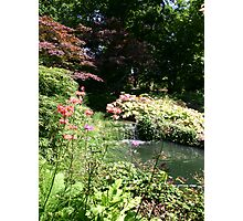 English Country Garden - Exbury Photographic Print