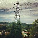 Natural Pylon by Claire Pugh