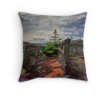 Shipwreck at Neys Provincial Park No.23 Throw Pillow