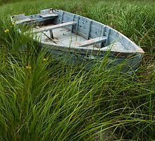 Abandoned row boat along the shoreline on Prince Edward Island by Randall Nyhof