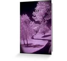 IR path Greeting Card