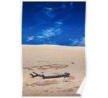 Silver Lake Dune with Dead Tree branch and Cirrus Clouds Poster
