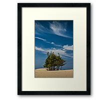 Silver Lake Dune with Tree Grove and Cirrus Clouds Framed Print