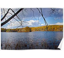 Hall Lake in Autumn Poster