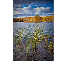 Hall Lake in Autumn No 0086 Photographic Print