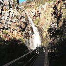 The Falls! From the Bridge, Morialta Cons. Park. Adelaide, Sth. Aust. by Rita Blom