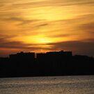 Sun Setting Behind Alexandria by SherryLynn58