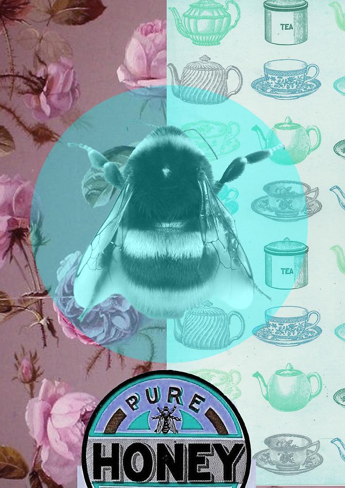 """""""Honey"""" by ShaneThompson"""