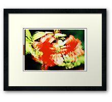 Rhododendron I. Framed Print