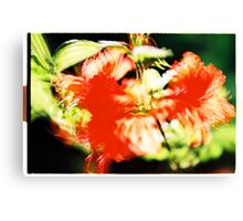 Rhododendron I. Canvas Print