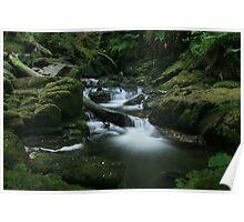 Lesser falls at Torc falls in Killarney national park Poster