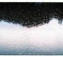 Rain II. by Zuzana Vajdova
