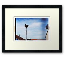 Stork's home Framed Print