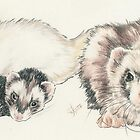 Ferret Clan by BarbBarcikKeith