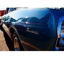 Barracuda Reflection Photographic Print
