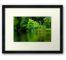 Falling In Love With a Stranger Framed Print