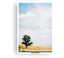 By Yourself I. Canvas Print