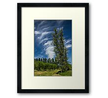 Orchard in West Michigan with Cirrus Clouds Framed Print