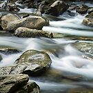 Smokey Mountain Stream by Randall Nyhof