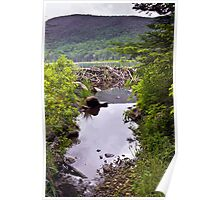 Beaver Dam and Mountains Poster