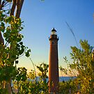 Little Sable Lighthouse seen through the Trees by Randall Nyhof