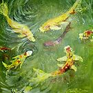 Koi Fish Pond by Cherie Roe Dirksen