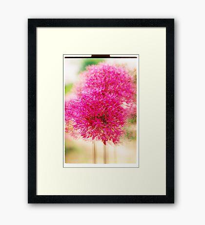 Garlic in Action (vertical) Framed Print