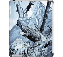 Nature dry. iPad Case/Skin