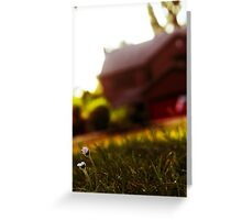 Little Flower In A Big World Greeting Card