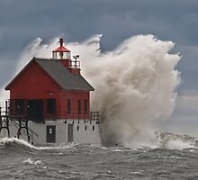 Standing Strong in the Storm by Roger  Swieringa