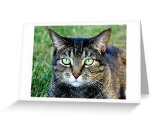 Green Cat Eyes  Greeting Card