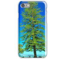 The Norfolk Pine iPhone Case/Skin
