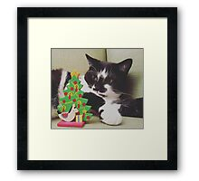 Kitten Christmas Framed Print